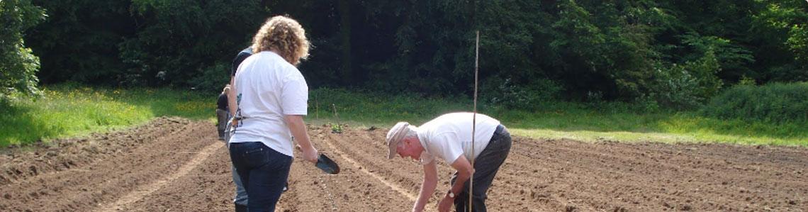 Grow Community Garden