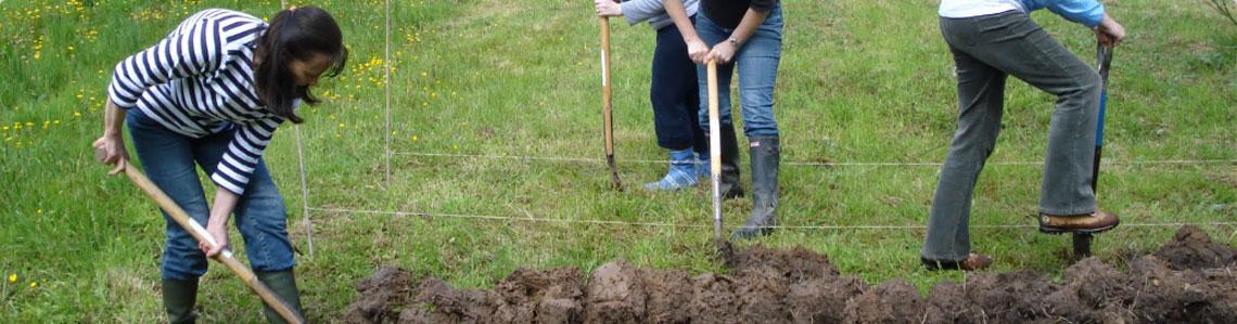 Grow Community Gardens